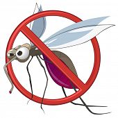 STOP Mosquito poster