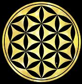 circles sacred symmetry esoteric energy golden illustration poster