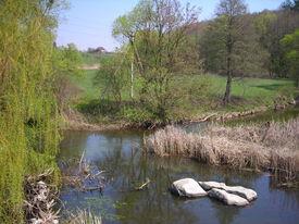 River In The Spring