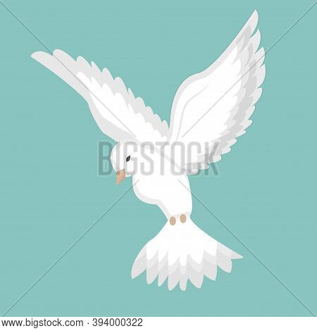Dove, Pigeon Flight In White Colour Stock Vector Illustration. Peaceful Bird, Elegant And Silhouette