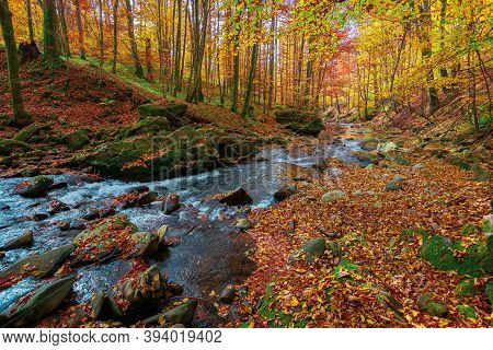 Mountain River In The Forest. Water Flow Among The Rocks. Trees In Autumn Colors. Sunny Forenoon Wea