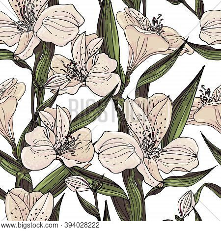 Seamless Vector Floral Pattern With Pastel Pink Alstroemeria On A White Background.