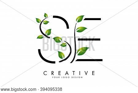 Leaf Letters Se S E Logo Design With Green Leaves On A Branch. Letters Se S E With Nature Concept. E