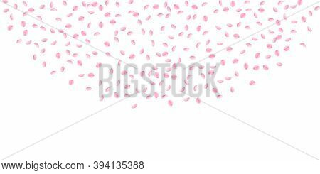 Sakura Petals Falling Down. Romantic Pink Silky Small Flowers. Sparse Flying Cherry Petals. Wide Top