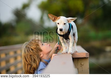 Cute Child Boy Feels Tenderness And Forgiveness. Concept Of Caring Pets. Carries Little Dog, Tender