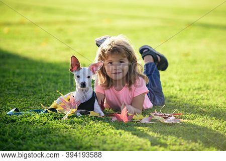 Funny Kid With Puppy Dog. Teenager In The Park Play With A Doggy. Blond Happy Boy With Her Chihuahua