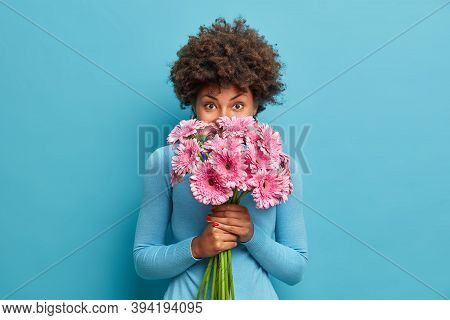 Good Looking Delicate African American Woman Smells Rosy Gerbera Flowers, Enjoys Pleasant Odour Hold