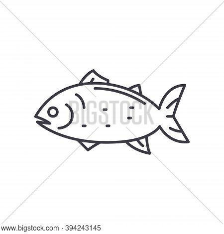 Atlantic Fish Icon, Linear Isolated Illustration, Thin Line Vector, Web Design Sign, Outline Concept
