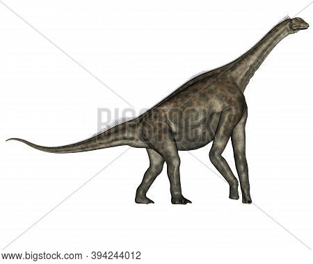 Atlasaurus Dinosaurs Walking Isolated In White Background - 3d Render