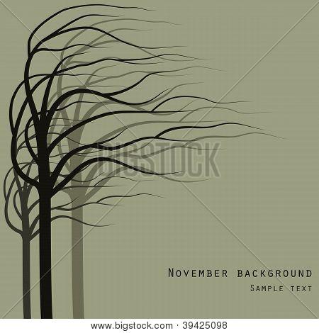 November Trees Background