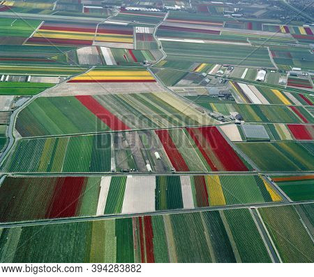 Noordwijkerhout, Hogeveense Polder, Holland, May 12 - 1986: Historical aerial photo of the colorful flower fields near Noordwijkerhout, Hogeveense Polder in the province Zuid Holland