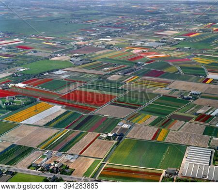 Lisse, Holland, May 12 - 1986: Historical aerial photo of the flower fields near Lisse and Voorhout, the Beekpolder