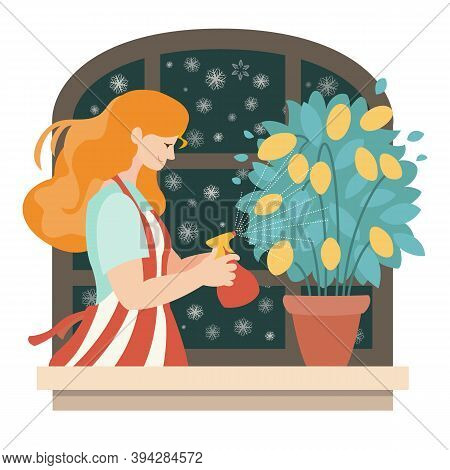 Home Plant Growing. A Young Woman Sprays A Lemon In A Pot. Vector