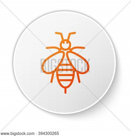 Orange Line Bee Icon Isolated On White Background. Sweet Natural Food. Honeybee Or Apis With Wings S