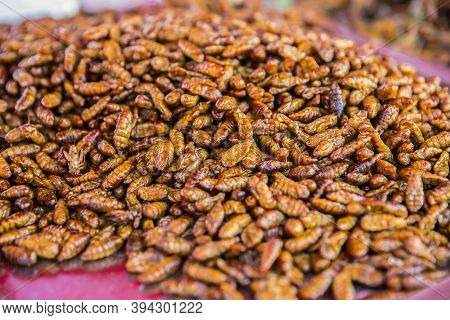Fried Insects Protein Rich Food, Bamboo Worm Insect Crispy With Sauce