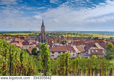 View Of  Dambach La Ville From The Hill With Vineyard, Alsace, France