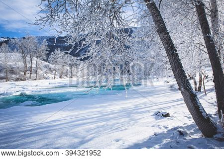 Fabulous Winter Landscape On The River. Trees In Hoarfrost. Bright Winter Sunny Day. Winter In Russi