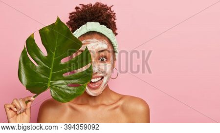 Studio Shot Of Delighted Woman With Curly Hair, Applies Cleansing Foam On Face, Holds Green Plant Le