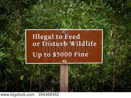 Illegal To Feed Wildlife Sign Describes Fine For Violation