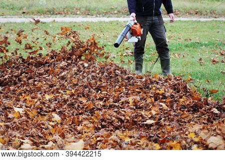 Worker Cleaning Falling Leaves In Autumn Park. Man Using Leaf Blower For Cleaning Autumn Leaves. Aut