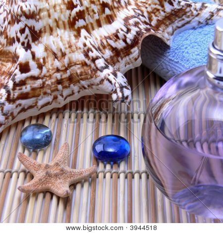 Shell And Aroma Oil