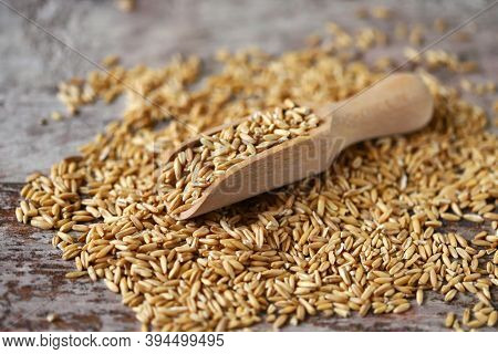 Oats Oat Grains In A Wooden Spatula.