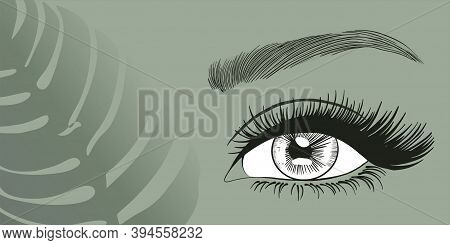 Open Beautiful Eye With Long Eyelashes For Business Cards, Flyers, Advertisements, Beauty Masters,