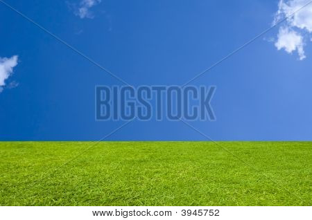 Perfect Grass And Sky Background