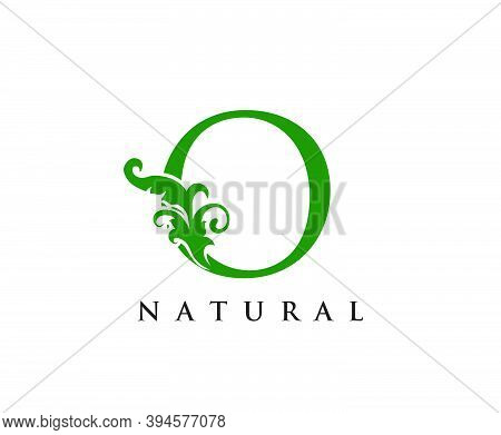Green O Letter Logo. Green Floral O With Classy Leaves Shape Design Perfect For Boutique, Jewelry, B