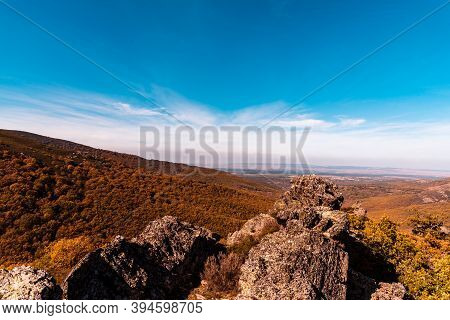 Beech Forest And Mountain In Autumn Time A Sunny Day