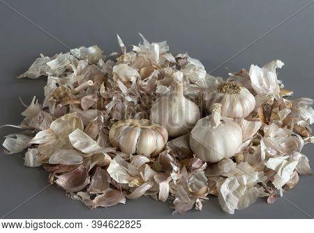 Garlic Close-up. The Husk Around The Garlic In The Background