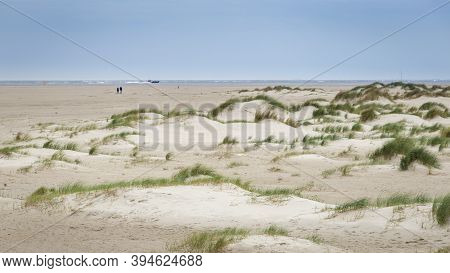 Landscape Background With Sand Dunes, Beach And Beach Grass Alog The North Sea Coast Of He Netherlan