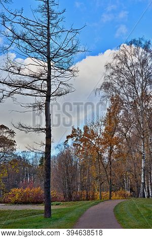Landscape Of An Autumn Park With A Dirt Path And Trees Against The Background Of A Blue Sky With Whi