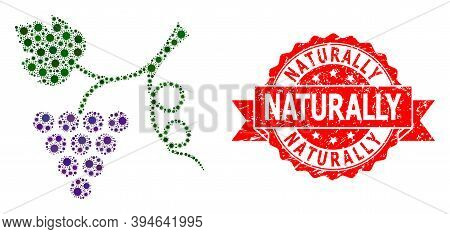 Vector Collage Grape Plant Of Covid-2019 Virus, And Naturally Rubber Ribbon Stamp Seal. Virus Partic