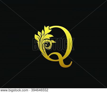 Golden Letter Q Logo Icon . Initial Letter Q Design Vector Luxury Gold Color. Print Monogram Initial