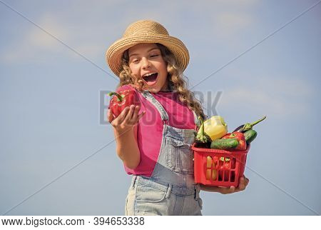 Organic Food. Child Carry Harvest Sky Background. Homegrown Veggies. Natural Vitamin Nutrition. Crop