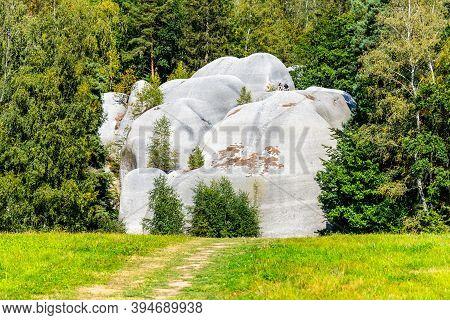 Elephant Sandstone Rocks, Sloni Kameny, Near Jitrava In Lusatian Mountains, Czech Republic