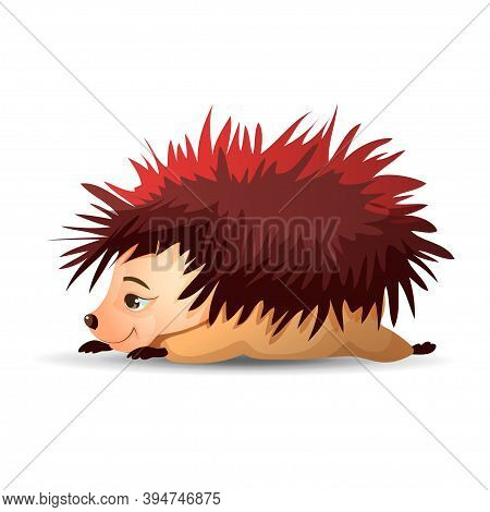 Cute Hedgehog Is Lying On His Stomach And Sleeping. Vector Hedgehog. Hedgehogs Vector Illustration.