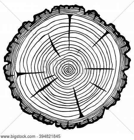 Log Cutting, Firewood Harvesting, Sawmill. Vector Image Isolated On A White Background. Space For Te