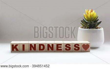 The Word Kindness Written In A Wooden Cube And A White Background, Near A Cactus