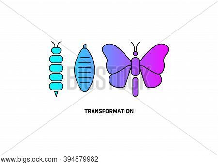 Transformation Concept. Caterpillar, Butterfly, And Cocoon Stages