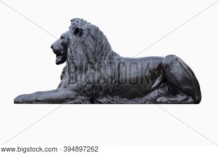 Bronze statue of a lion at Trafalgar Square in London - Isolated on a white background with clipping path