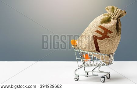 Indian Rupee Money Bag In A Shopping Cart. Profits And Super Profits. Minimum Living Wage. Consumer