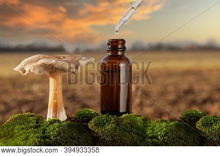 Alternative Medicine - Medical Mushroom, Concept. Health Or Psychedelic Mushroom Essence