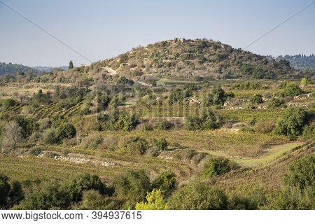 Tzova, Israel - November 14th, 2020: Vineyards And Plantations Near Jerusalem, Israel, Under The Anc