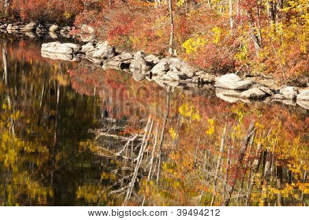 Fall reflections - changing leaves reflected on water