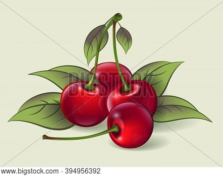 Ripe Cherries On A Light Background. Ripe Fruits And Leaves Illustration. Organic Farm Products. Ill