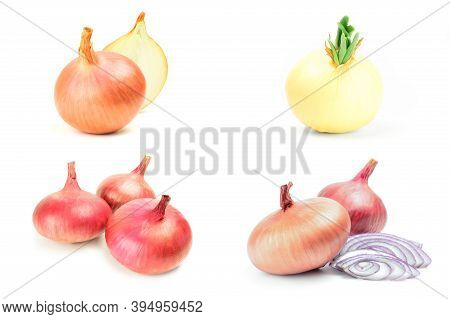 Group Of Onion Isolated On A White Background Cutout