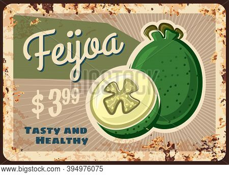 Feijoa Rusty Metal Plate, Vector Vintage Rust Tin Sign With Ripe Sweet Exotic Fruit, Price Tag For R