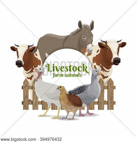 Farm Animals, Livestock And Poultry Banner. Donkey, Cow Or Bull Behind Wooden Fence, Turkey, Goose A